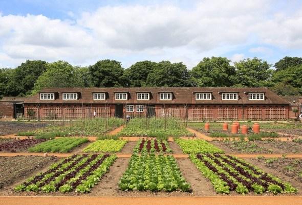 Королевский огород на окраине Лондона