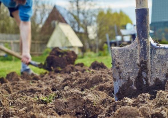 лопата на огороде в земле