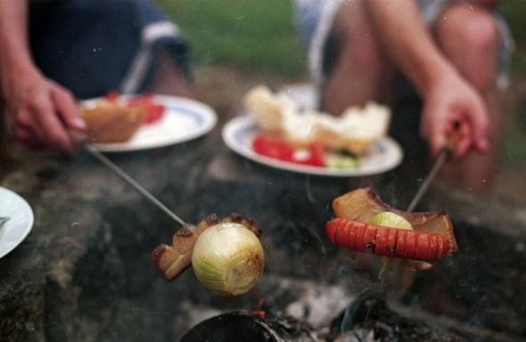 Всі на природу: правила безпеки на пікніку