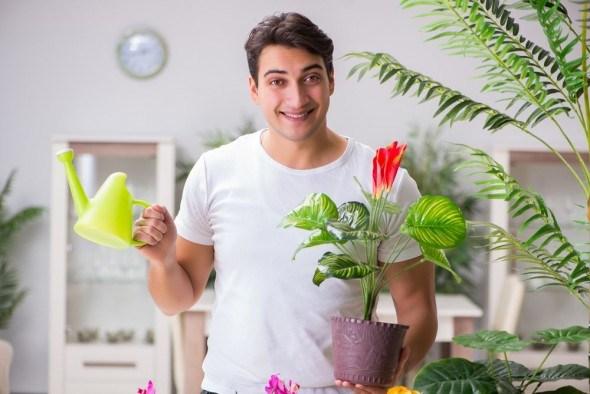 Как правильно поливать цветы
