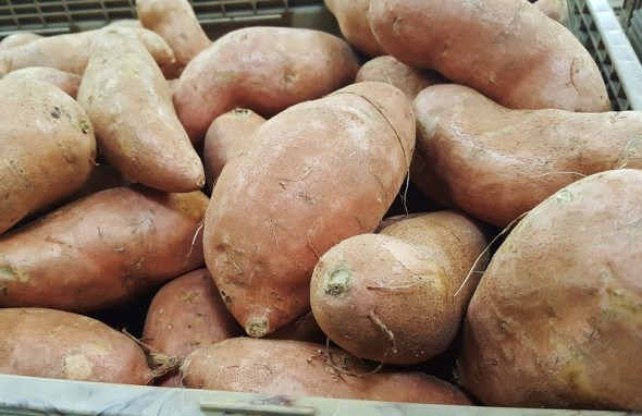 Солодка альтернатива: чи може батат замінити картоплю?