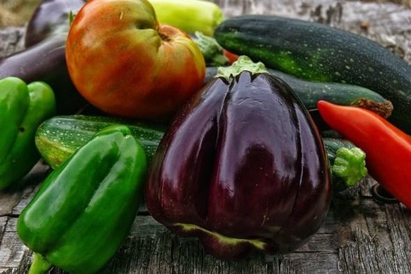 Особенности выращивания рассады перца и баклажана