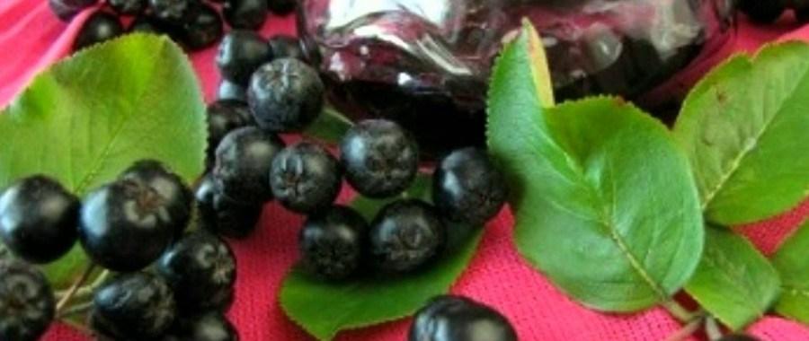 Варенье из рябины черноплодной