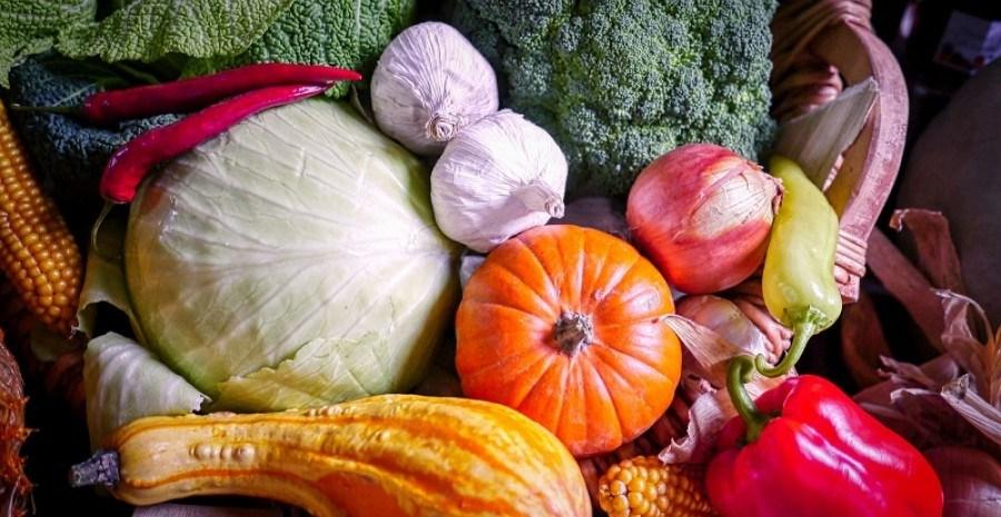 """""""Спекотний"""" вересень: необхідні роботи на городі у перший місяць осені"""