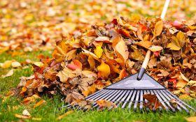 Осенняя уборка: все работы в одном списке